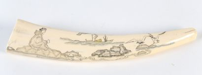 DENT de MORSE, gravée d'une scène de pêche...