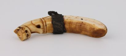 CANINE d'hippopotame sculptée à son extrémité...