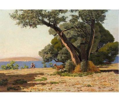 Eugène de BARBERIIS (1851-1936) Bergers. Huile sur toile signée en bas à droite....