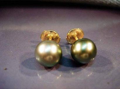 Paire de boutons d'oreilles en or jaune chacun...