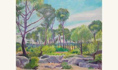 Hans Keller Paysage aux rochers Huile sur...