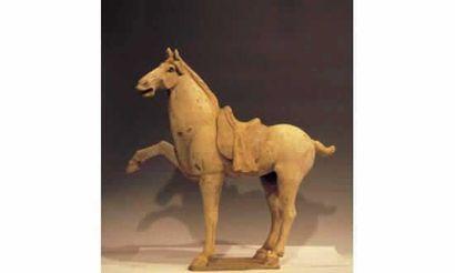 Fringuant « Prancing-Horse » en terre cuite à engobe et polychromie. La selle drapée...