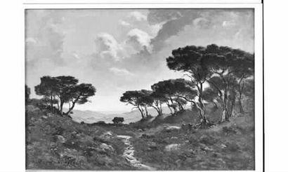 Raymond VERDUN (1873-1954) « Chemin dans...