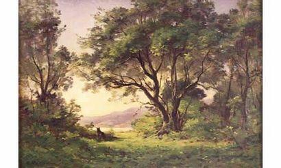 Raymond VERDUN (1873-1954) « Lac dans le...