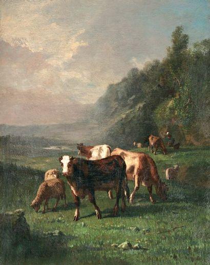 BRIELMAN Jacques Alfred (XIXe-1892) « Vaches au paturage » Huile sur toile. Signée...