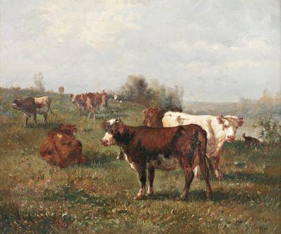 CORTES André ( 1815-1880) « Le troupeau de vaches » Huile sur toile. Signée en bas...
