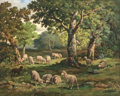 CERAMANO Charles Ferdinand (1829-1909) « Bergère et ses moutons en forêt de Fontainebleau...