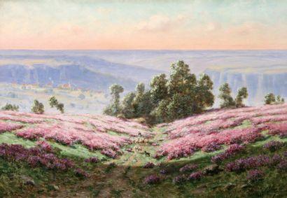 SCHULZ Adrien (1851-1931) « Les bruyères, vallée de la Creuse » Huile sur toile....