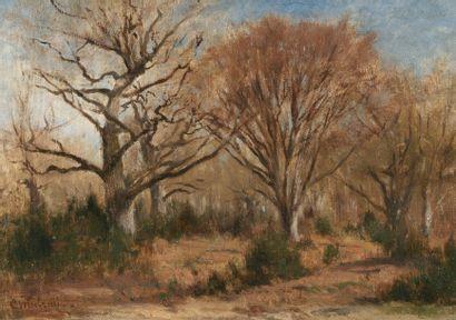 CHINTREUIL Antoine (1816-1873) « La forêt au printemps » Huile sur panneau. Signée...