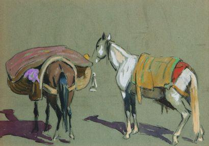 Deux chevaux marocains. Crayon, gouache et...