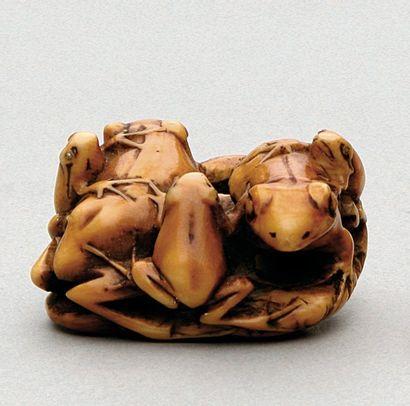NETSUKE en ivoire représentant cinq grenouilles...