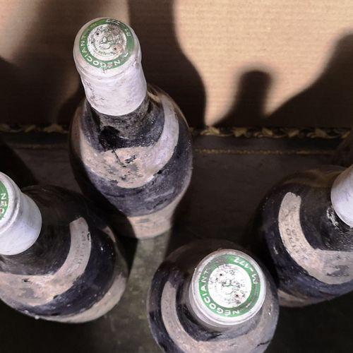 6 bottles  CORTON BRESSANDES Grand cru Jaboulet Vercherre 1982 Stained and damag…