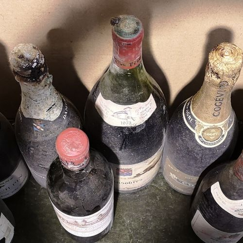 8 bottles and 1 magnum  VARIOUS WINES FOR SALE AS IS Champagne Rhône etc... Incl…