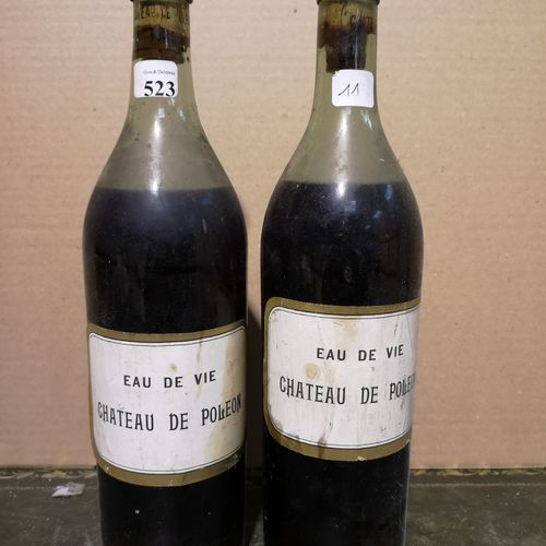 2 bottles  Eau de Vie Château de POLEON 1840 Vintage stamped on the cork. Probab…