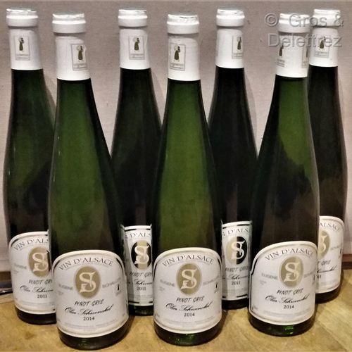 """7 bottles  PINOT GRIS """"Ober Schwenckel"""" E. SCHALLER 4 of 2011 and 3 of 2014"""