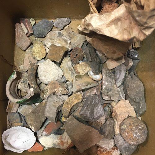 Un lot de plus de 30 spécimens de minéraux divers dont rose des sables, fossiles…