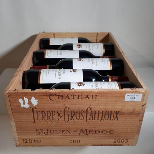 12 B CHÂTEAU TERREY GROS CAILLOUX CBO. St Julien 2003