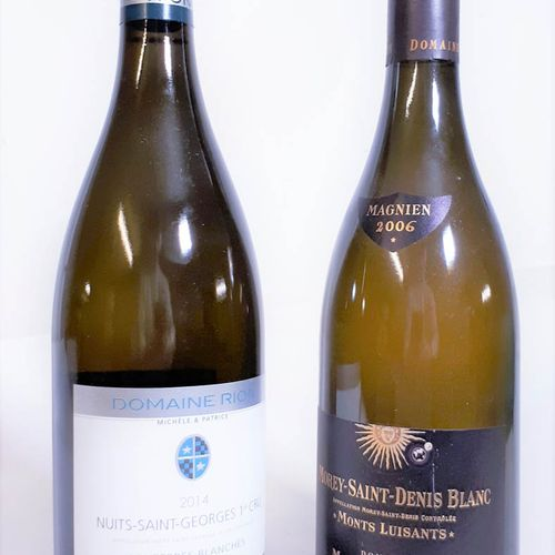 2 B Duo blanc dont NUITS St GEORGES 1er Cru LES TERRES BLANCHES 2014, D.Rion & M…