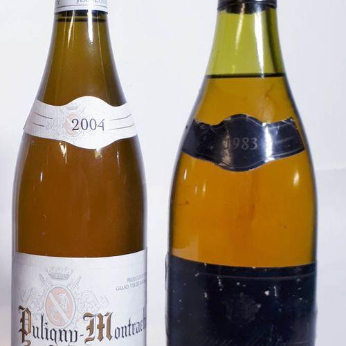2 B Duo blanc : 1 PUL. MONTRACHET 1er C. FOLATIERES 2004 Chavy (cla), + 1 PUL. M…