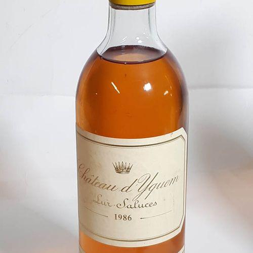 1 B CHÂTEAU D'YQUEM (H.E 3cm, els, cla frottemt) 1e G.C.C. Sauternes 1986