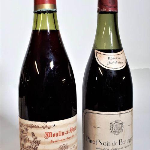 2 B dont 1B BOURGOGNE Pinot Noir, Réserve Chatelaine ( 5,6cm, efs, ela,cla)  1B …