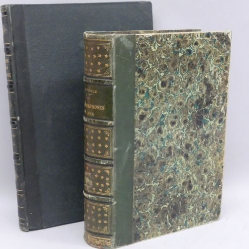 GRANDVILLE (J. J.). LES MÉTAMORPHOSES DU JOUR. Paris, Garnier, 1869. Fort volume…