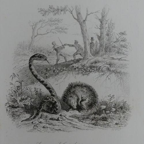 [GRANDVILLE]. LAVALETTE (Sourdille de). FABLES. Paris, Hetzel, 1847. Grand in 8 …