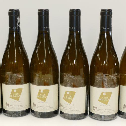 6 Btles Saumur blanc Clos Romans 2015 Domaine Les Roches Neuves IC 10/10 PM 专家:E…