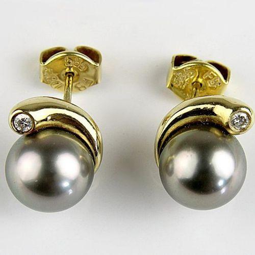Paire de clous d'oreille en or jaune avec perles de Tahiti, or jaune 585, poinço…