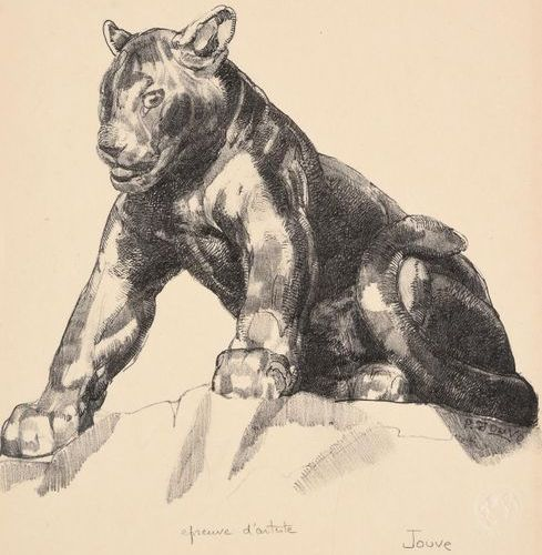 PAUL JOUVE (1878 1973) Young seated panther Original lithograph, black print Art…