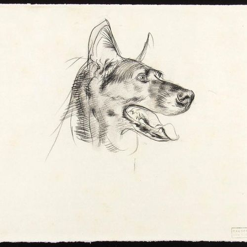 ROMANO DAZZI  Rome, 1905 La Lima, 1976 Three drawings with a study of Wolf Dog, …