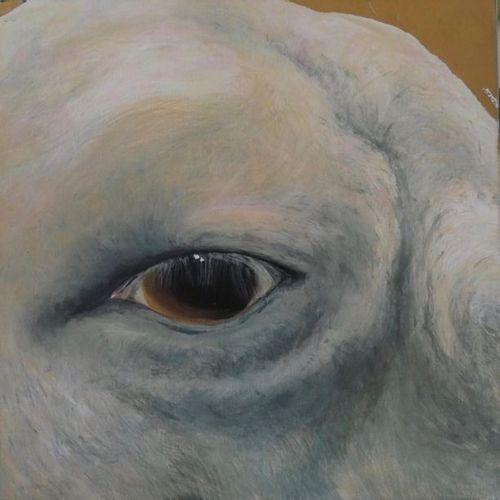 Jean Jacques OSTIER (1945 2011) Oeil de mouton Huile sur toile Signée Ostier et …