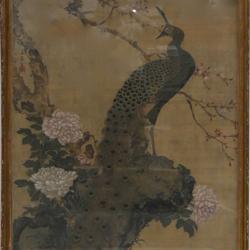 JAPAN 19th century  Ink and colours on silk high up, Peacock perched on a rock w…