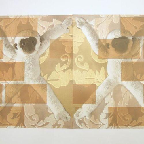 Kusnir Carlos Né en 1947 à Buenos Aires, cet artiste inclassable et prolifique a…