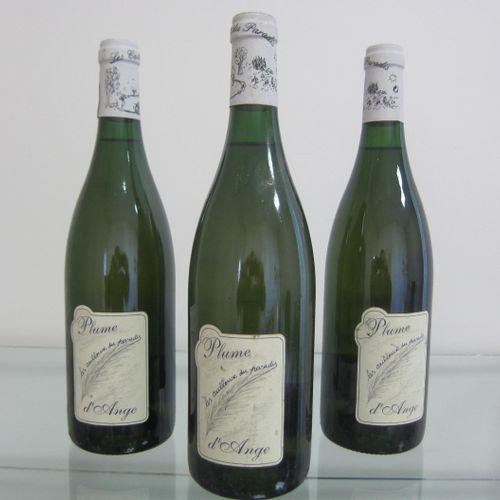 Anjou, Plume d'Ange, Les Cailloux du Paradis, étiquette correcte, bon niveau, lo…