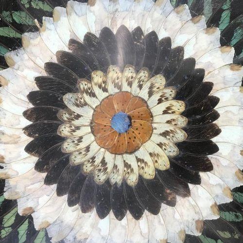 Deux plateaux de service en bois exotique à fond d'ailes de papillons. L'un mono…