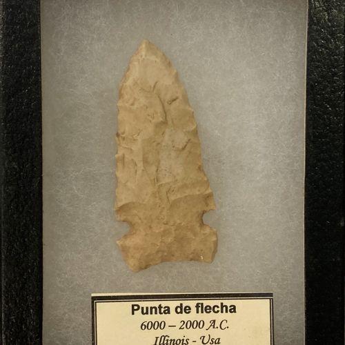 "Flint arrowhead presented in a box marked ""punta de flecha"" 6000 2000 A.C. Illin…"