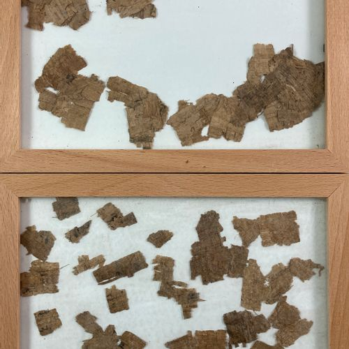 Papyrus fragments. Traces of writing. In two boxes and two frames. Dimensions of…