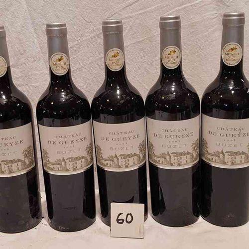 5 bouteilles château DE GUEYZE BUZET 2008. Belle présentation. Médaille d'OR PAR…