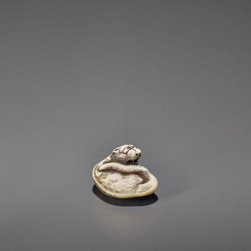 AN IVORY OSAKA STYLE NETSUKE OF A RECLINING TIGER AN IVORY OSAKA STYLE NETSUKE O…