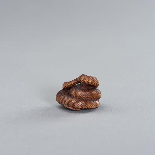 A CONTEMPORARY WOOD NETSUKE OF A COILED SNAKE AFTER MATSUDA SUKENAGA UN NETSUKE …