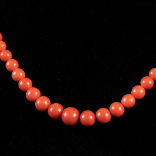 Collier de corail, 12g ; 45cm.