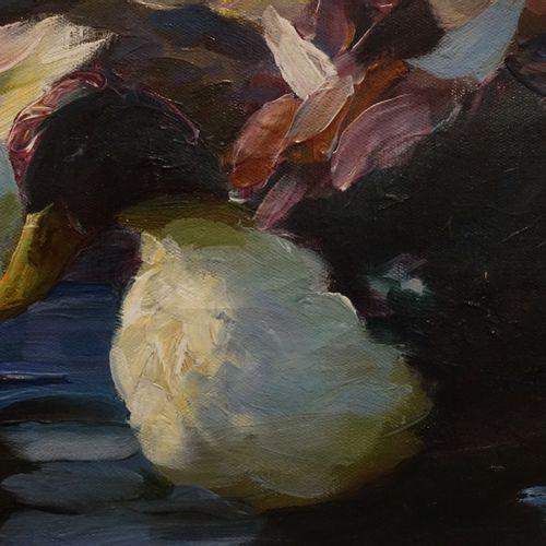Alexander KOESTER (1864 1932). Canards blancs. Huile sur toile, signée en bas, a…