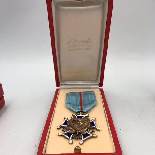 Lot de sept médailles commémoratives : une ressemble à l'Ordre du Lion et du Sol…