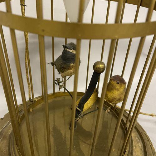 LAMPE en forme de cage à oiseaux en métal doré et trois oiseaux, sur son socle e…