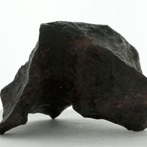 La Portada Spectacular 953 g arc shaped meteorite Siderite type meteorite discov…
