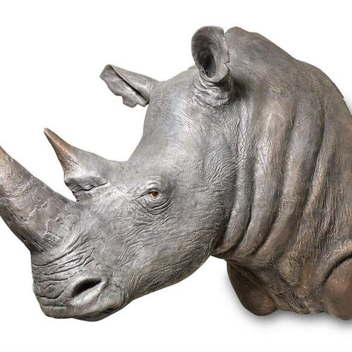 'THE GOLDEN RHINO', BY JAMES PERKINS 'THE GOLDEN RHINO' JAMES PERKINS A moulded …