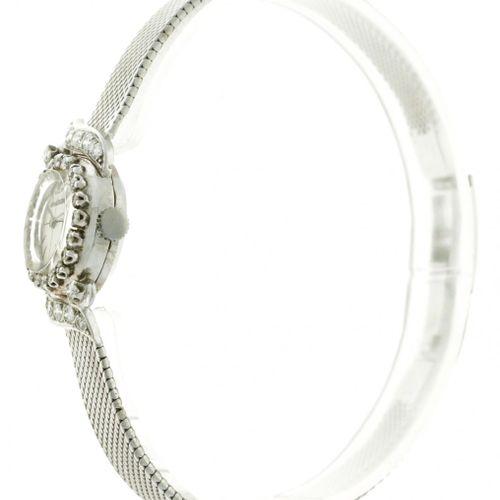 Jaeger LeCoultre Diamond Ladies watch apprx. 1960. Boîte : or blanc (18 kt.) bra…