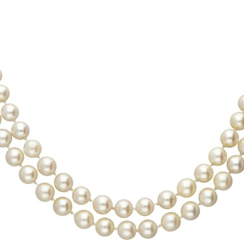 Two row freshwater pearl necklace with 14K. Yellow gold and silver closure set w…