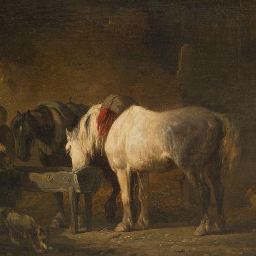 Pieter Frederik van Os (Amsterdam 1808 1892 Haarlem), Horse in a stable. 签名(右下),…